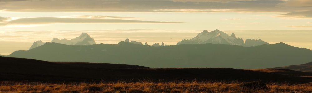 Torres del Paine in the distance